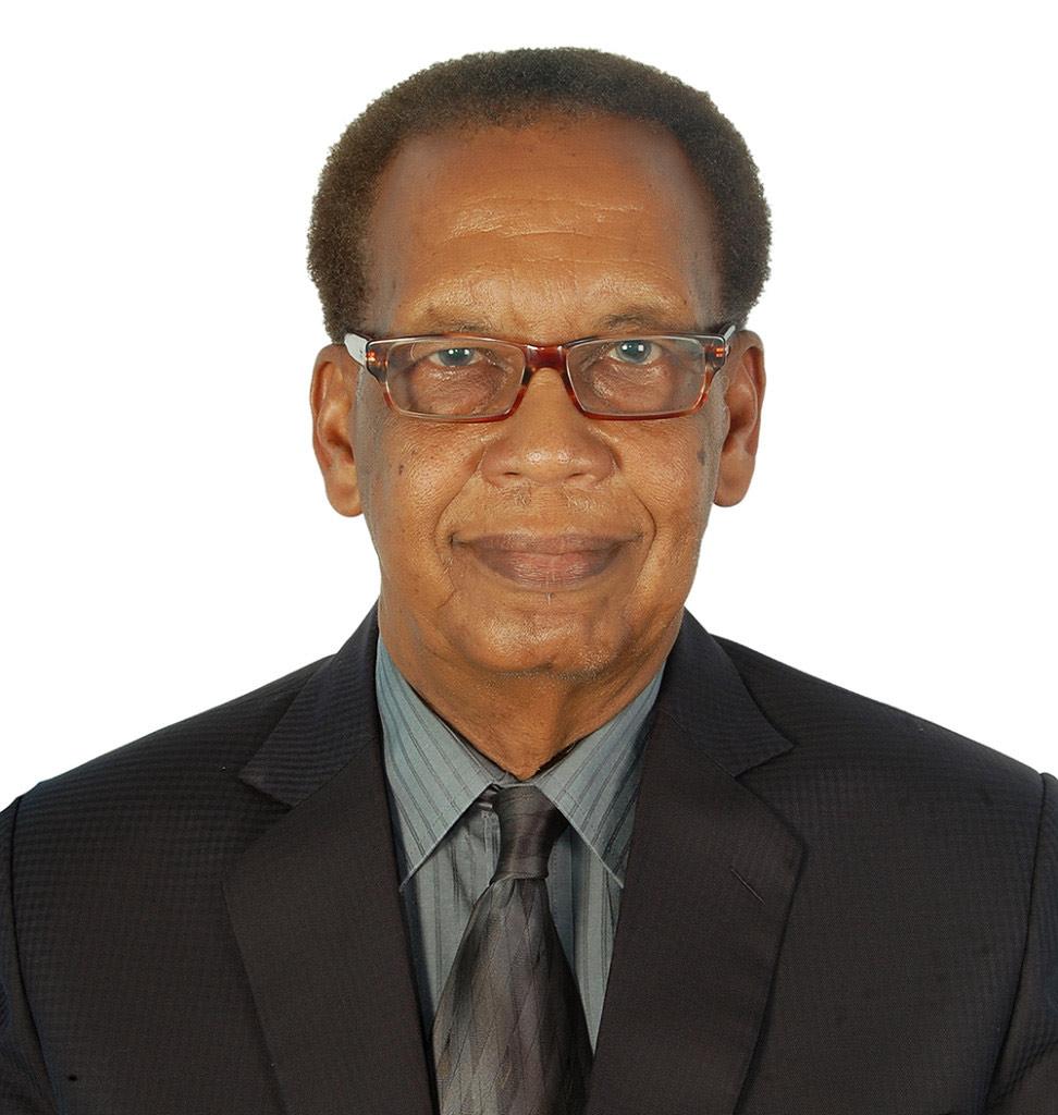 Dr. Faisal Mohammed El Amir, CITP|FIBP — Senior Industrial Consultant