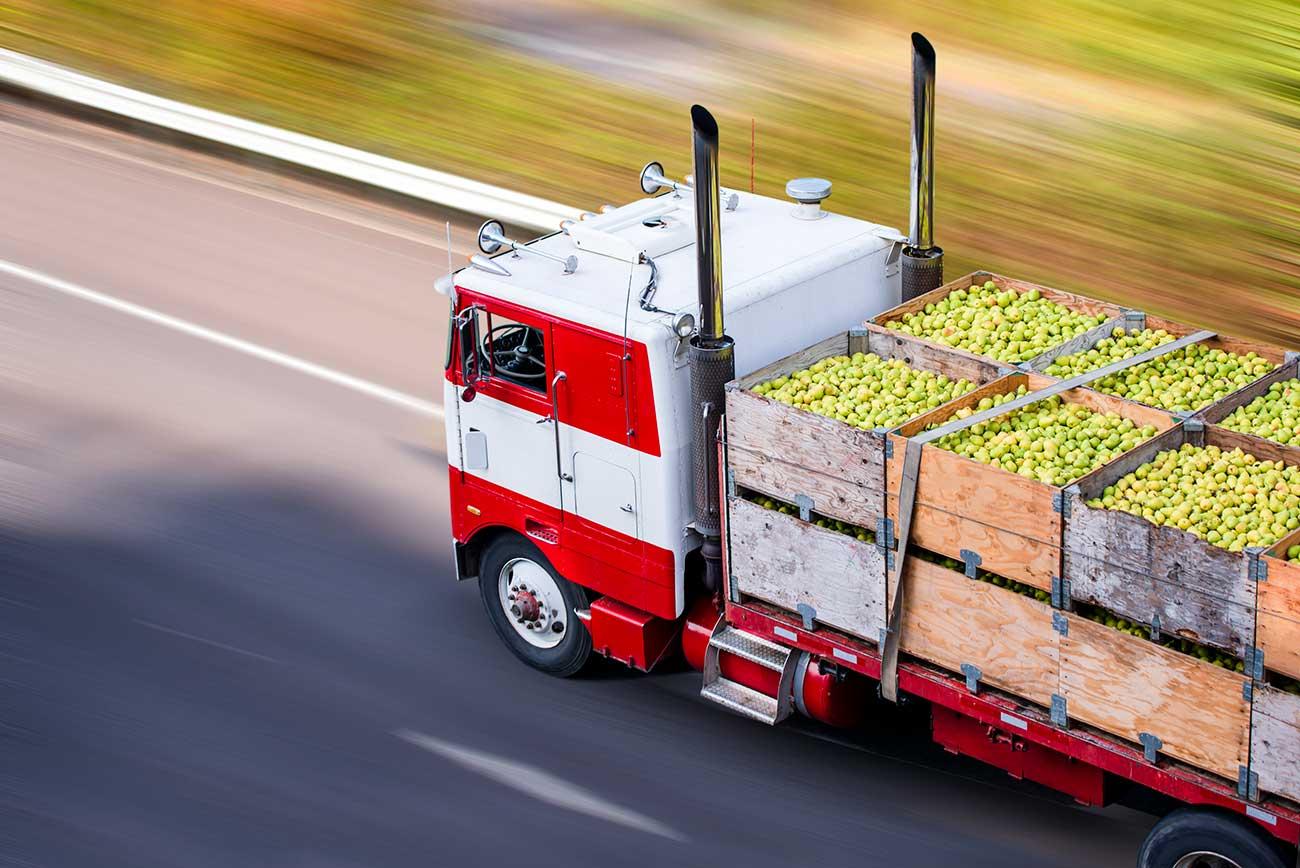Transport truck full of pears